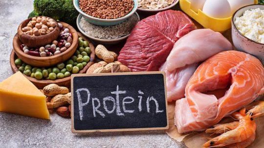 ما هي العناصر الغذائية المتواجدة في البروتينات الحيوانية؟